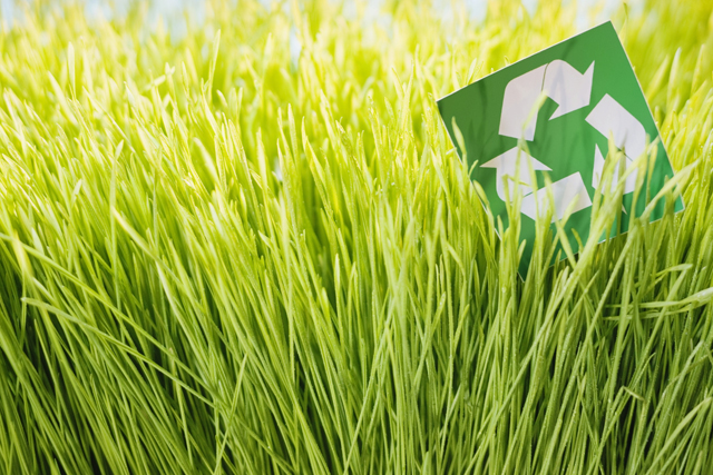 recycling sign in grass image